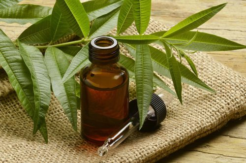 Tee Tree Oil Effective home remedies for acne