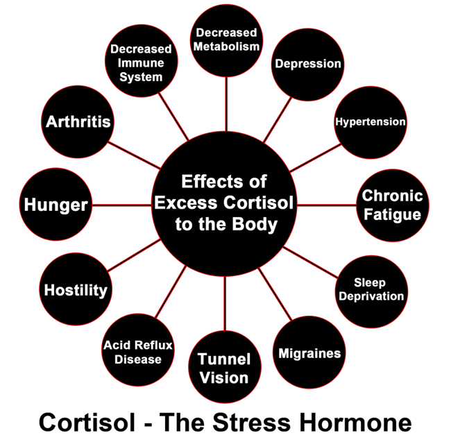Increased cortisol Levels